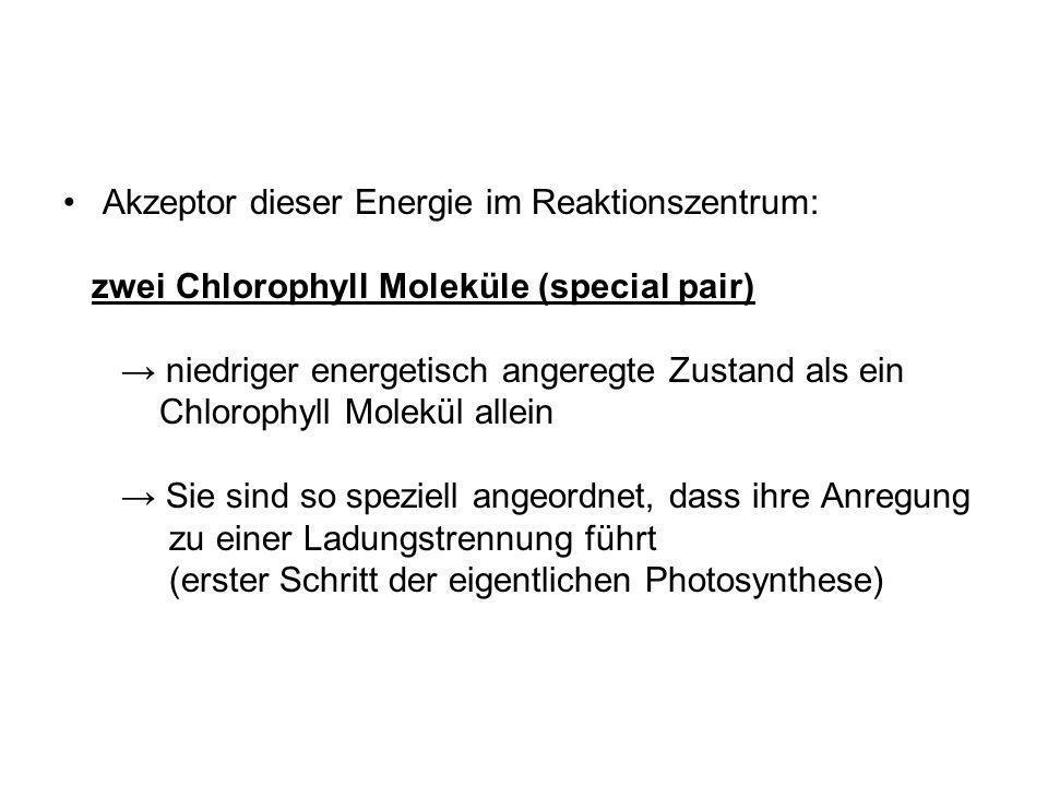 Akzeptor dieser Energie im Reaktionszentrum: