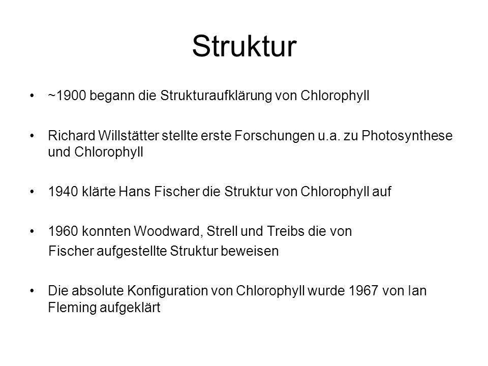Struktur ~1900 begann die Strukturaufklärung von Chlorophyll