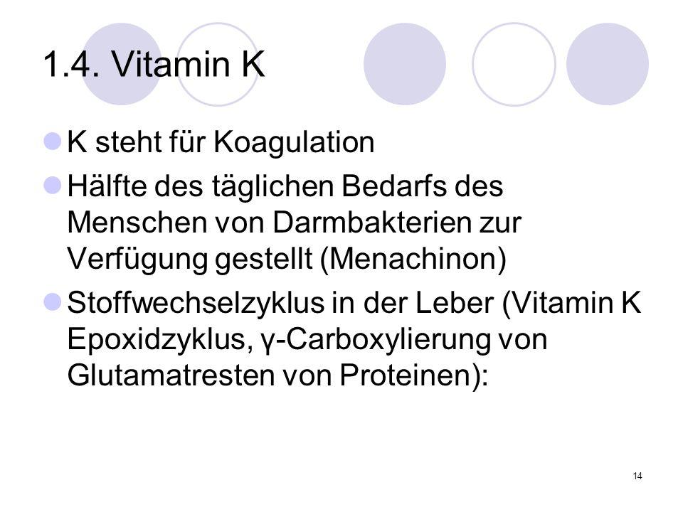 1.4. Vitamin K K steht für Koagulation