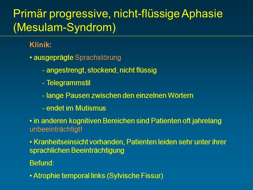 Primär progressive, nicht-flüssige Aphasie (Mesulam-Syndrom)