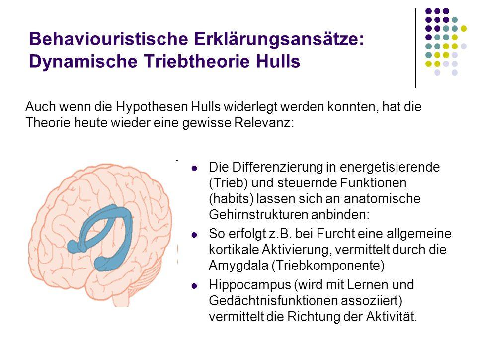 Behaviouristische Erklärungsansätze: Dynamische Triebtheorie Hulls