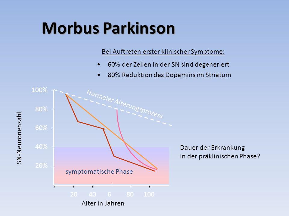 Morbus Parkinson Bei Auftreten erster klinischer Symptome: