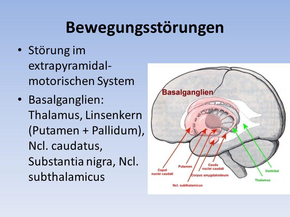 Bewegungsstörungen Störung im extrapyramidal-motorischen System