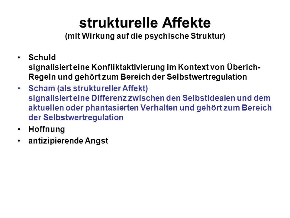 strukturelle Affekte (mit Wirkung auf die psychische Struktur)
