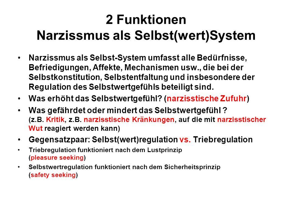 2 Funktionen Narzissmus als Selbst(wert)System