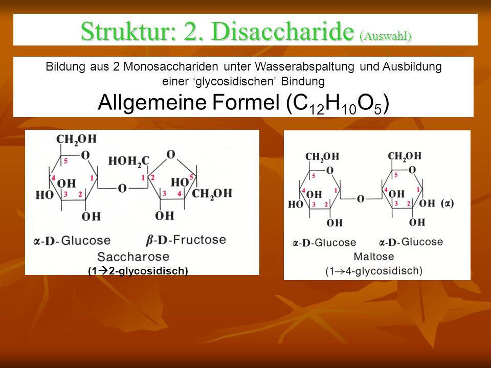 Struktur: 2. Disaccharide (Auswahl)