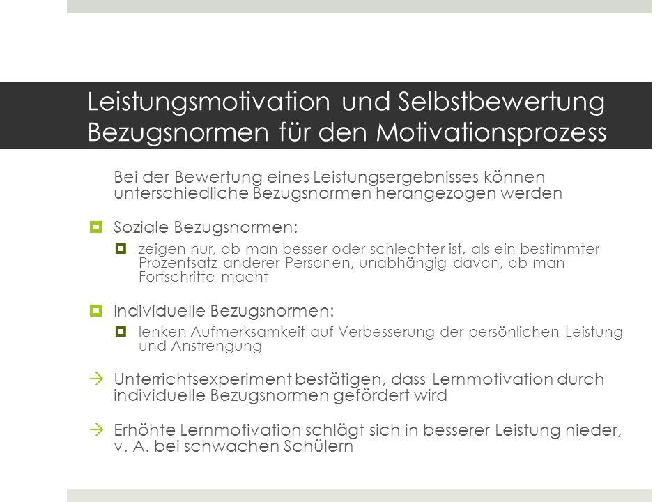 Leistungsmotivation und Selbstbewertung Bezugsnormen für den Motivationsprozess
