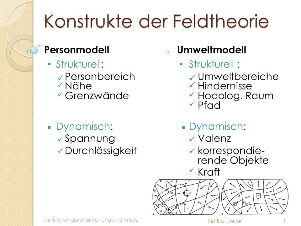 Konstrukte der Feldtheorie