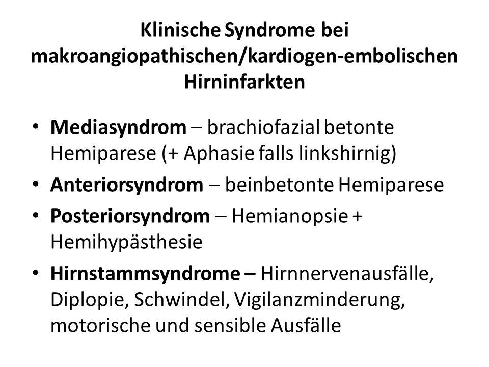 Klinische Syndrome bei makroangiopathischen/kardiogen-embolischen Hirninfarkten