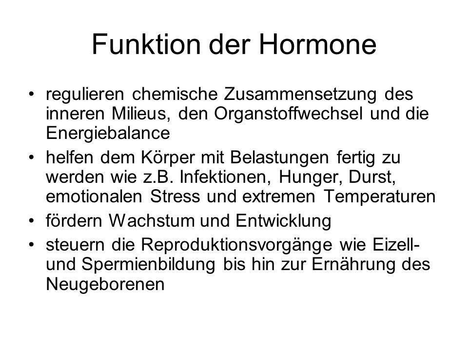 Funktion der Hormone regulieren chemische Zusammensetzung des inneren Milieus, den Organstoffwechsel und die Energiebalance.