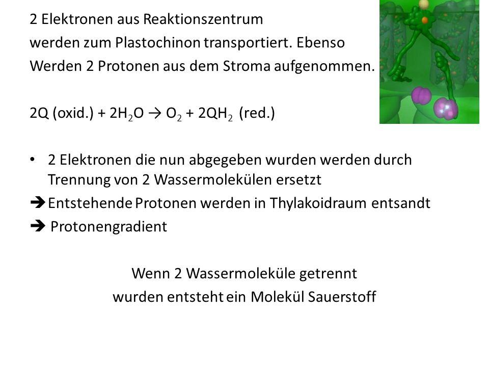 2 Elektronen aus Reaktionszentrum