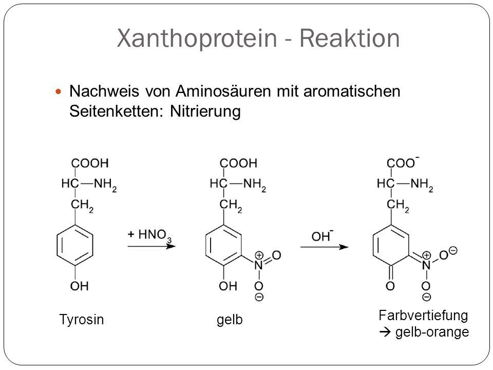 Xanthoprotein - Reaktion