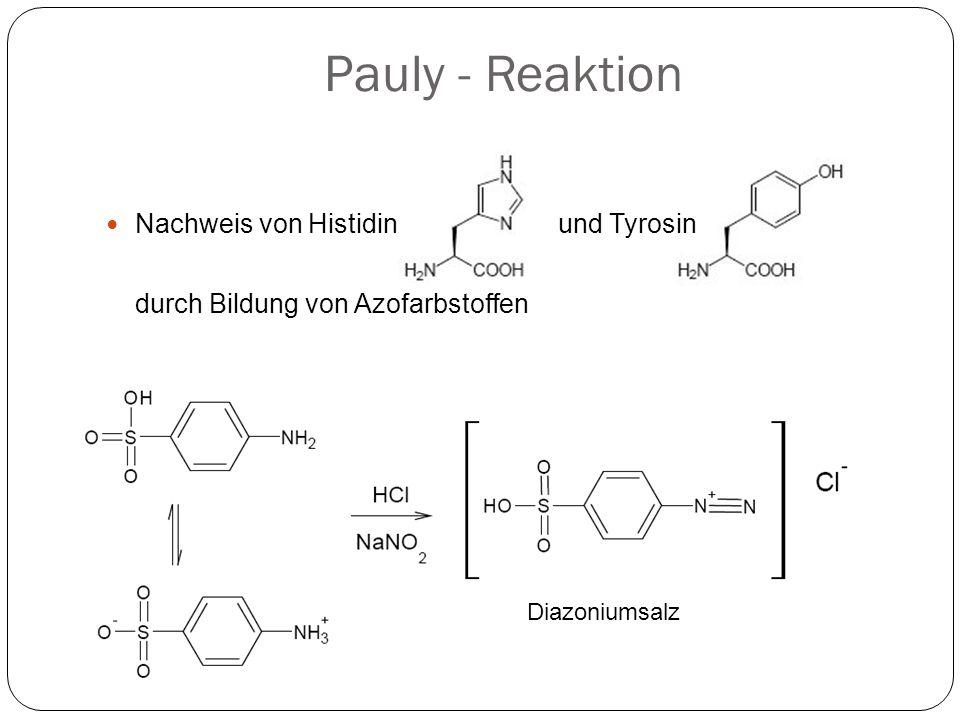 Pauly - Reaktion Nachweis von Histidin und Tyrosin
