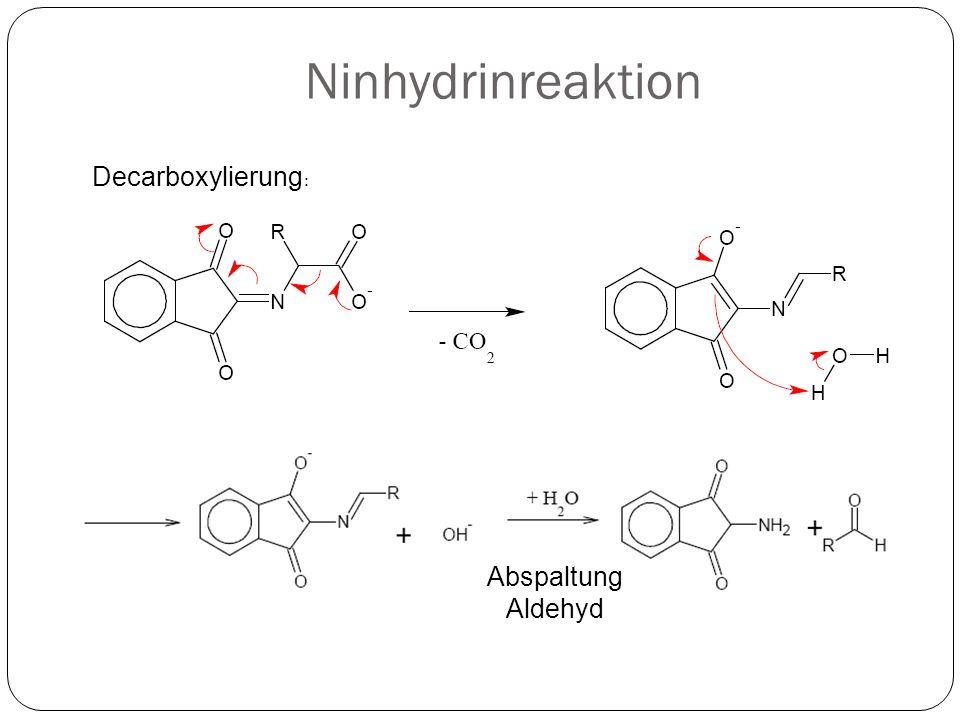 Ninhydrinreaktion Decarboxylierung: Abspaltung Aldehyd