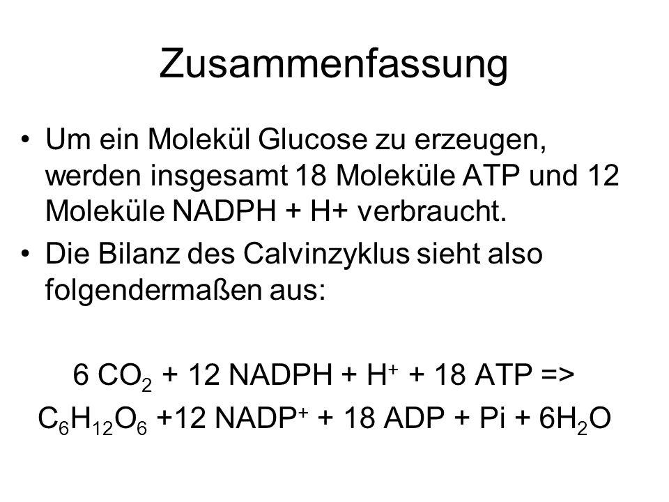6 CO2 + 12 NADPH + H+ + 18 ATP =>