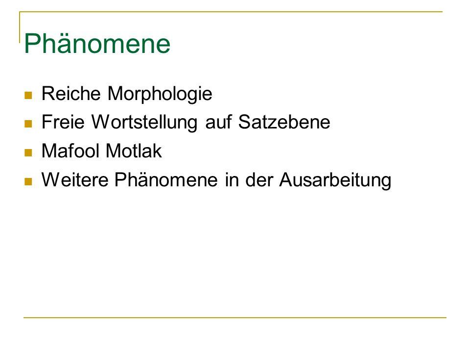 Phänomene Reiche Morphologie Freie Wortstellung auf Satzebene