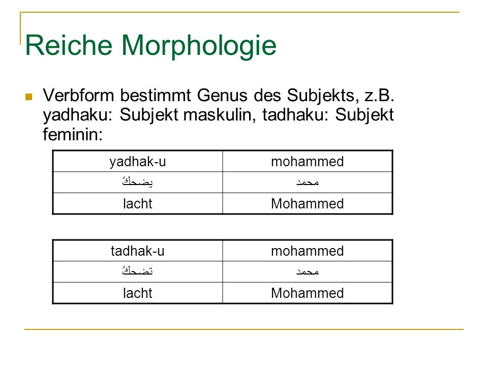 Reiche Morphologie Verbform bestimmt Genus des Subjekts, z.B. yadhaku: Subjekt maskulin, tadhaku: Subjekt feminin: