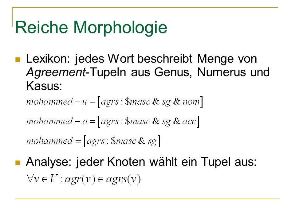 Reiche Morphologie Lexikon: jedes Wort beschreibt Menge von Agreement-Tupeln aus Genus, Numerus und Kasus: