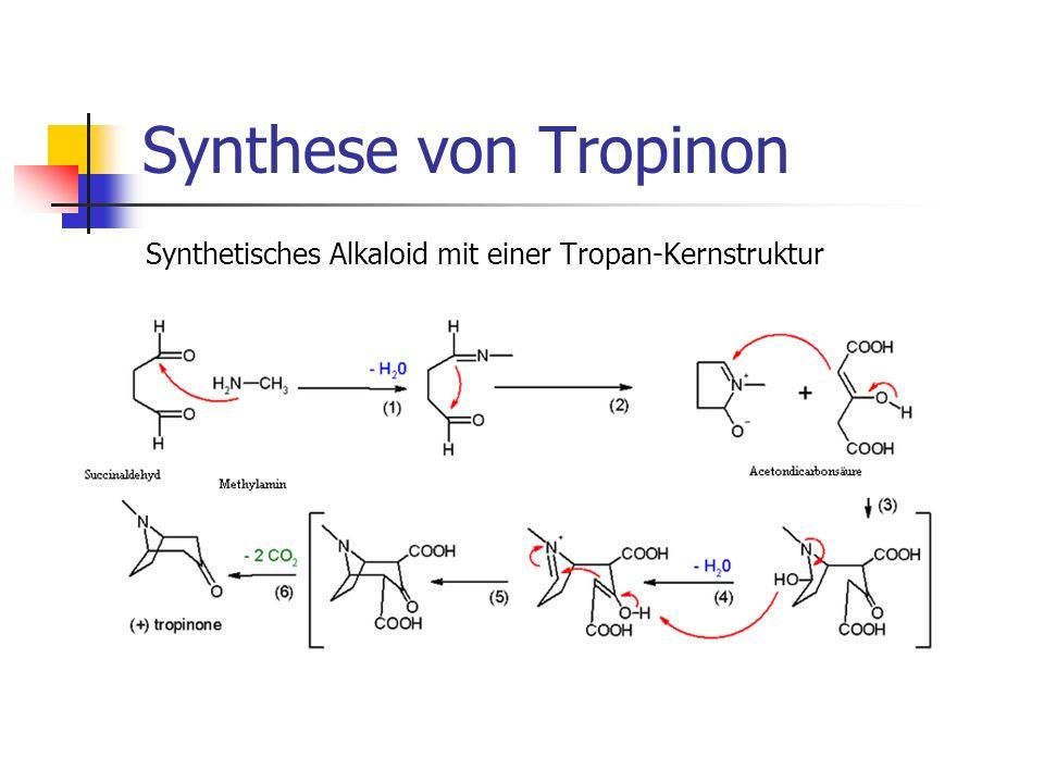 Synthese von Tropinon Synthetisches Alkaloid mit einer Tropan-Kernstruktur