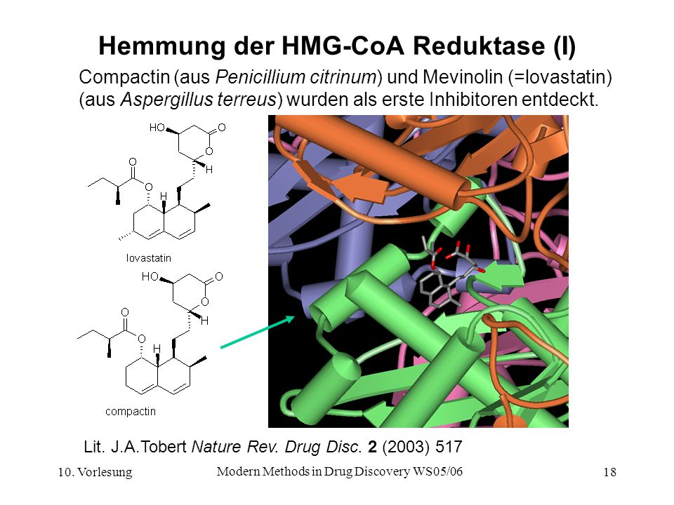 Hemmung der HMG-CoA Reduktase (I)
