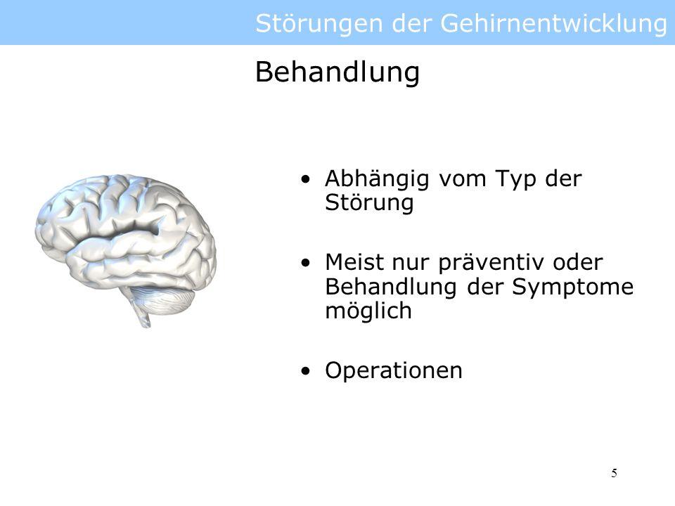 Störungen der Gehirnentwicklung