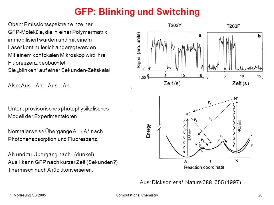 GFP: Blinking und Switching