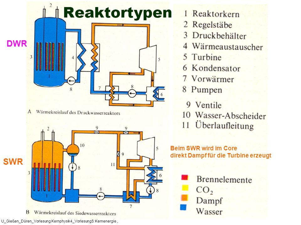 DWR SWR Beim SWR wird im Core direkt Dampf für die Turbine erzeugt