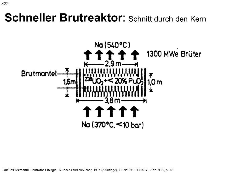 Schneller Brutreaktor: Schnitt durch den Kern