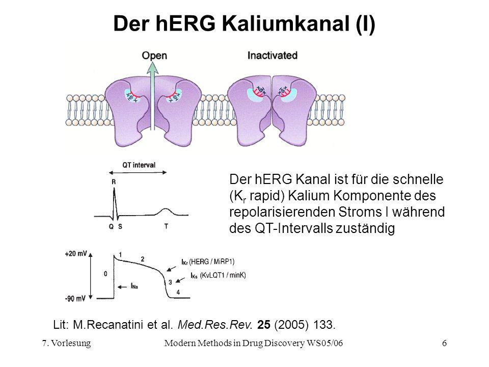 Der hERG Kaliumkanal (I)