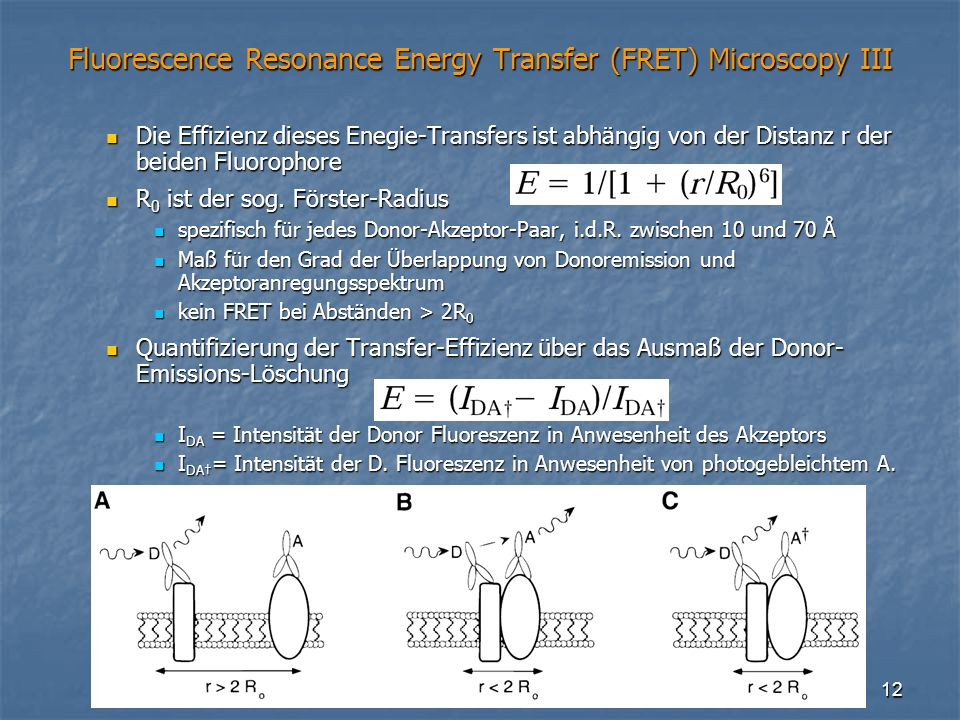 Fluorescence Resonance Energy Transfer (FRET) Microscopy III