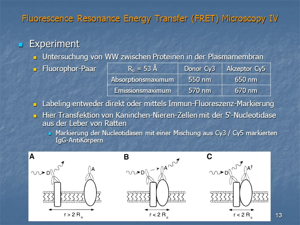 Fluorescence Resonance Energy Transfer (FRET) Microscopy IV