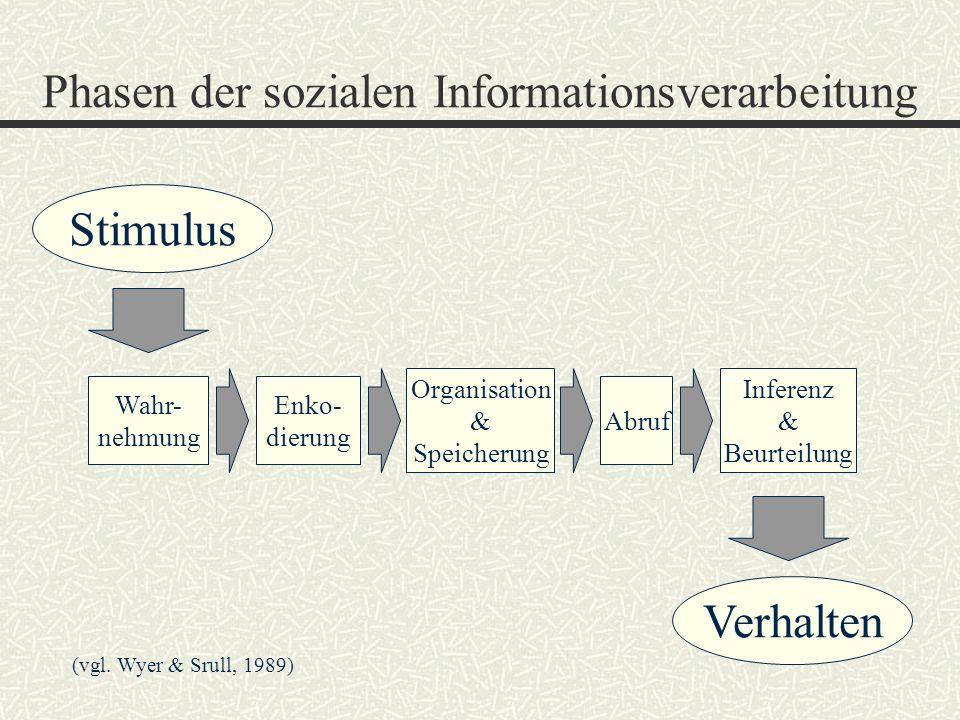 Phasen der sozialen Informationsverarbeitung