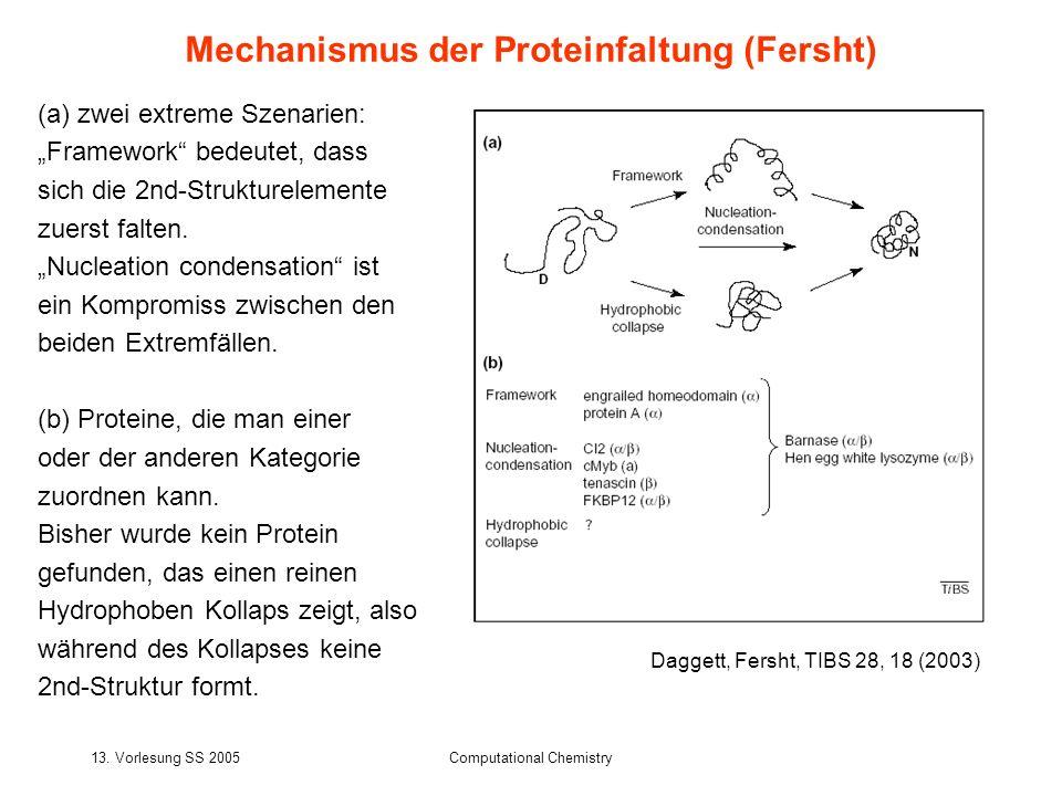 Mechanismus der Proteinfaltung (Fersht)