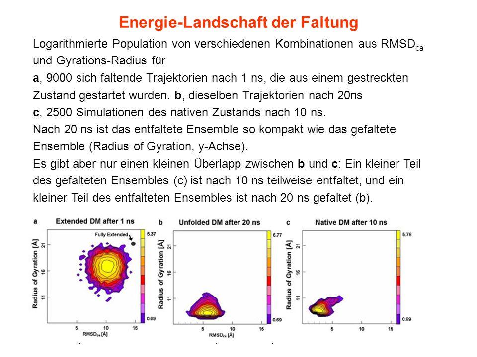 Energie-Landschaft der Faltung