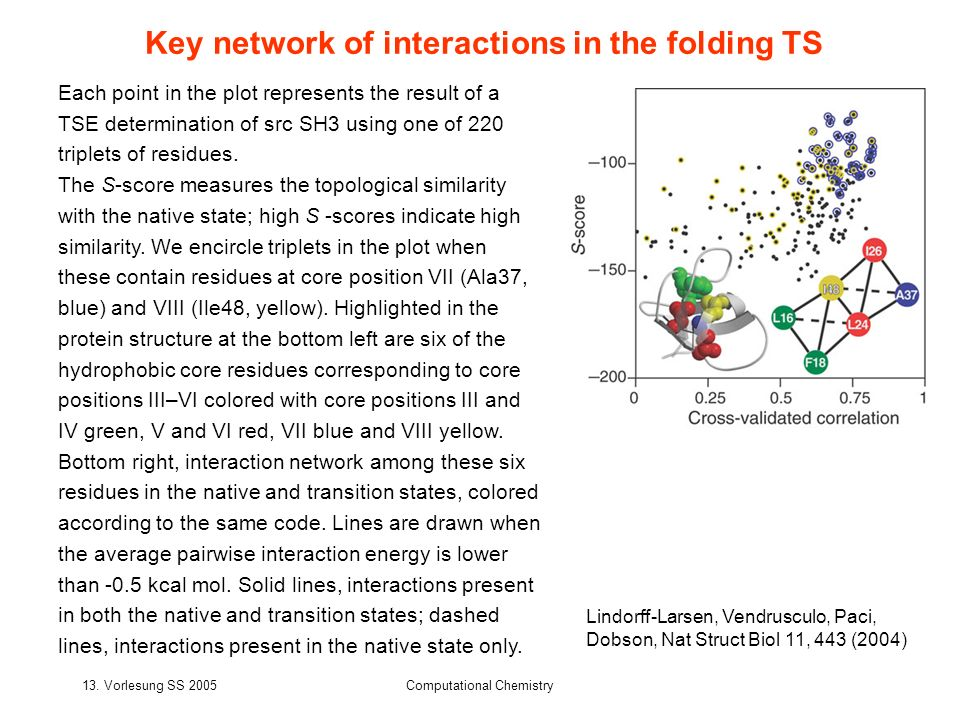 Key network of interactions in the folding TS