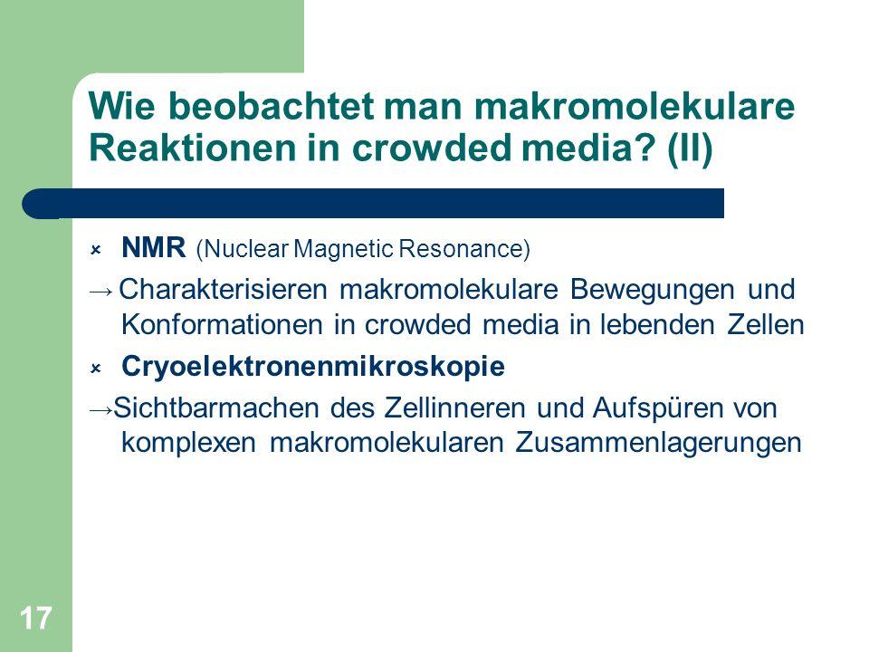 Wie beobachtet man makromolekulare Reaktionen in crowded media (II)