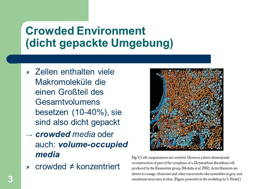 Crowded Environment (dicht gepackte Umgebung)