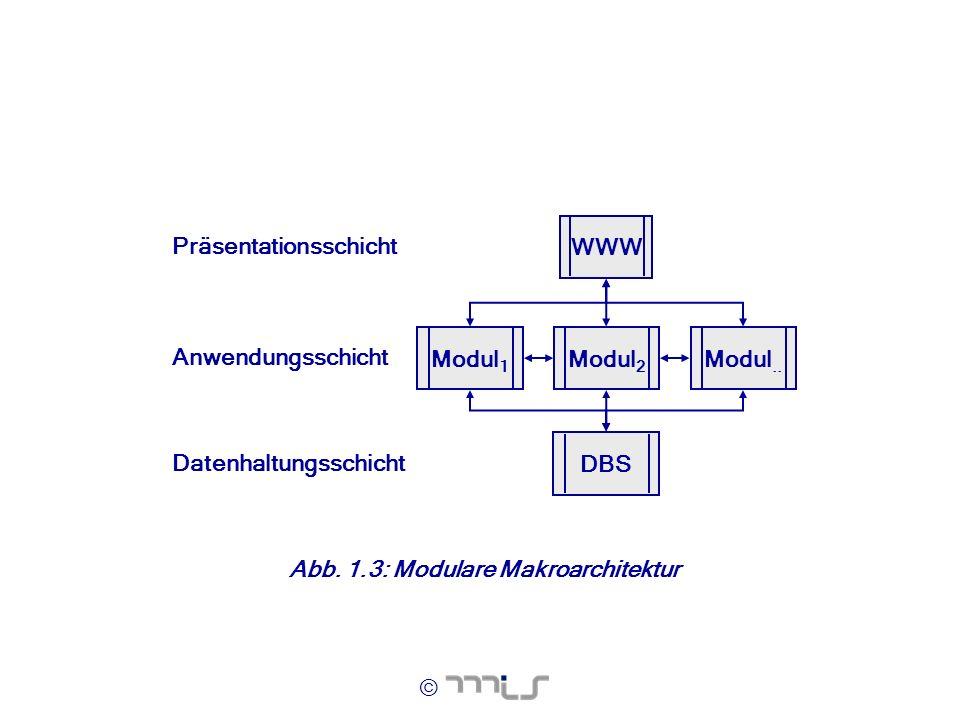 Modul1 WWW. DBS. Modul2. Modul.. Datenhaltungsschicht. Anwendungsschicht. Präsentationsschicht.