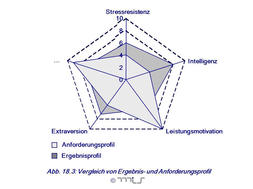 Ergebnisprofil Anforderungsprofil. 2. 4. 6. 8. 10. Stressresistenz. Intelligenz. Leistungsmotivation.