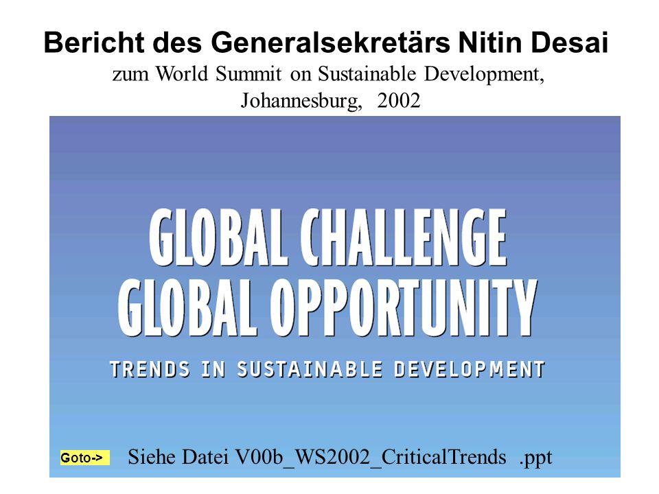 Bericht des Generalsekretärs Nitin Desai