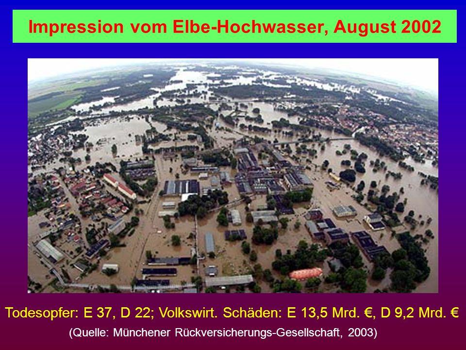 Impression vom Elbe-Hochwasser, August 2002