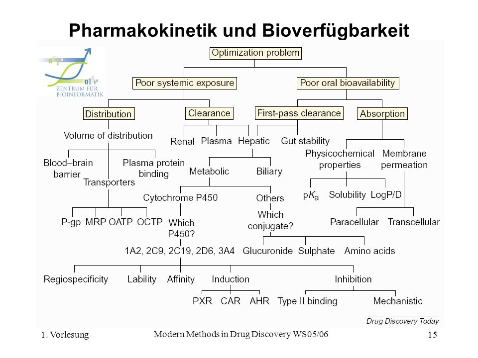 Pharmakokinetik und Bioverfügbarkeit