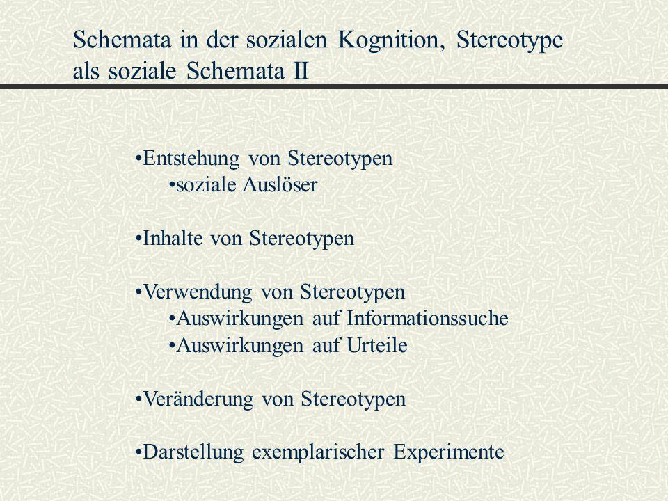 Schemata in der sozialen Kognition, Stereotype als soziale Schemata II