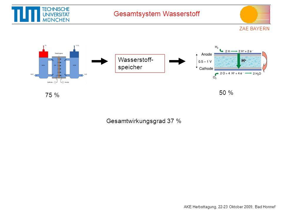 Gesamtsystem Wasserstoff