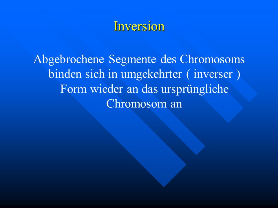 Inversion Abgebrochene Segmente des Chromosoms binden sich in umgekehrter ( inverser ) Form wieder an das ursprüngliche Chromosom an.