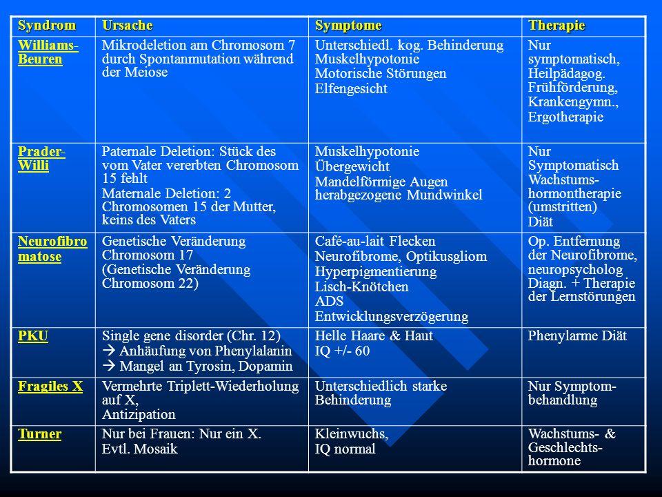 Syndrom Ursache. Symptome. Therapie. Williams-Beuren. Mikrodeletion am Chromosom 7 durch Spontanmutation während der Meiose.