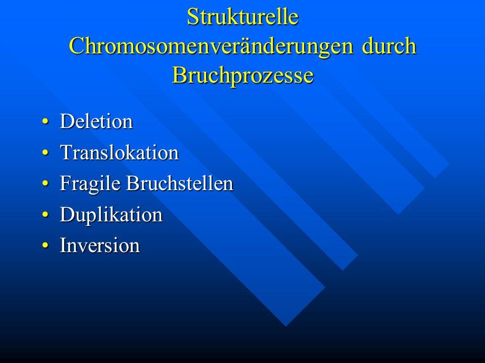 Strukturelle Chromosomenveränderungen durch Bruchprozesse