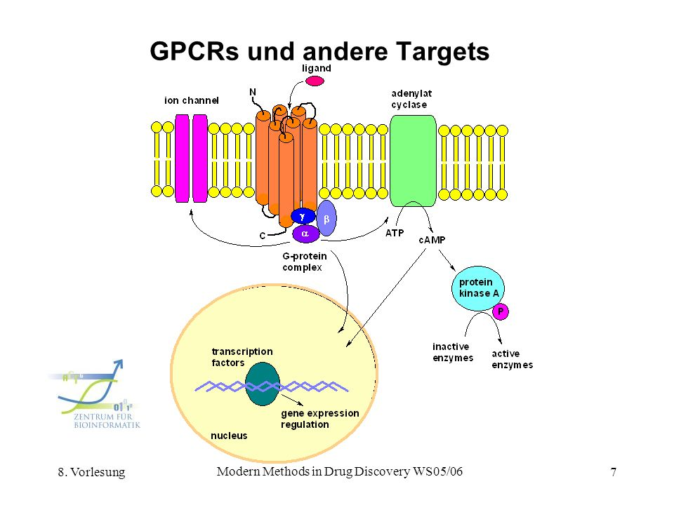 GPCRs und andere Targets