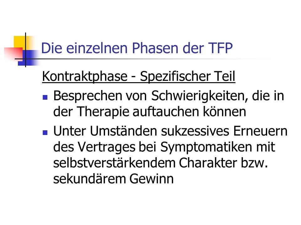 Die einzelnen Phasen der TFP