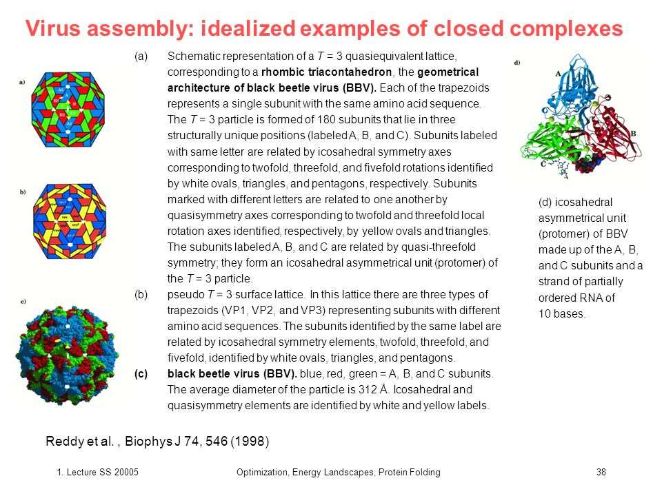 Virus assembly: idealized examples of closed complexes